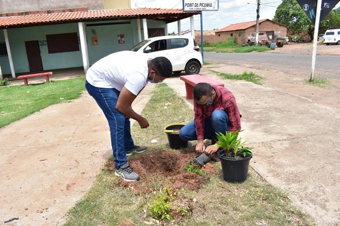 Praça do Conjunto recebe plantio de mudas