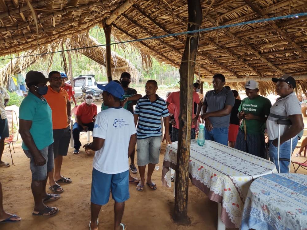 Apicultura: Comunidade rural de Santa Rosa se organiza para produção de mel