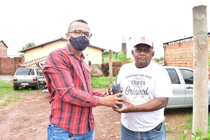 Prefeitura de Santa Rosa distribui 3 mil mudas de caju para agricultores familiares