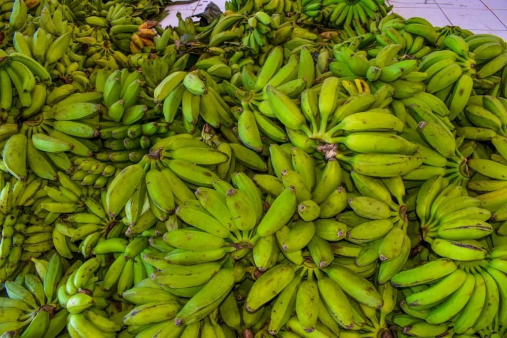 Produtos da Agricultura Familiar foram entregues em Santa Rosa