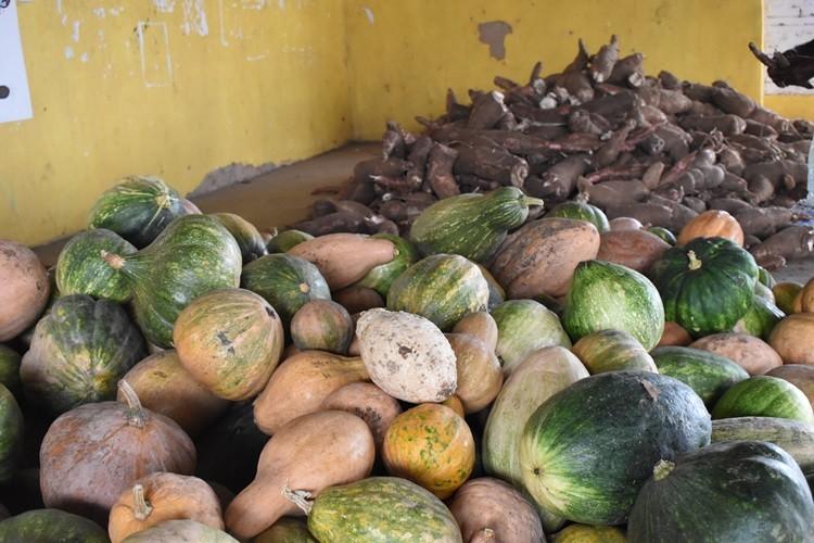 Mais uma tarde de entrega de alimentos do Programa de Aquisição de Alimentos (PAA) em Santa Rosa