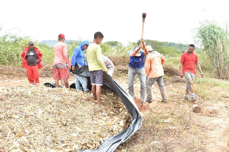 Prefeitura auxilia agricultores na produção da silagem em Santa Rosa do Piauí