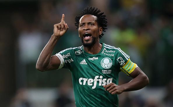 Zé Roberto renova com o Palmeiras até o o final do ano de 2017